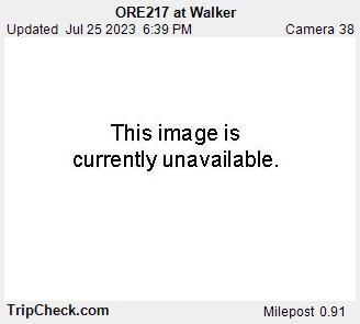 ORE217 at Walker